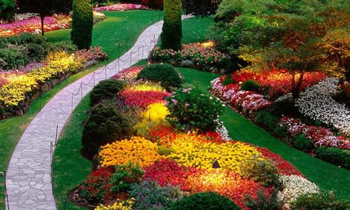 Landscape Design Columbus Oh Arbor Tree Care